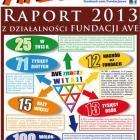Raport Fundacji AVE za rok 2013